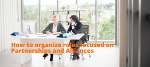 Alliances, partners, How to organize roles focused on Partnerships and Alliances